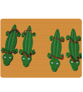 coursecrocodiles